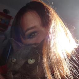 cat cats makeup photography pets freetoedit