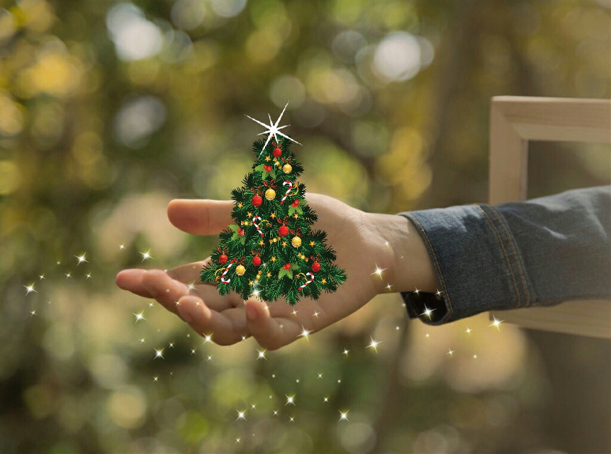 Thanks @pa for featuring  my image in Smash Hits  #FreeToEdit  #christmastree  #christmas  #hand