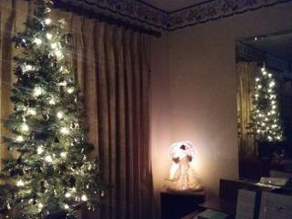 colorful christmas christmastree photo