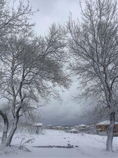 snow view white winter landscape
