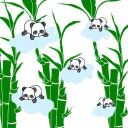 freetoedit pandacloudremix cute