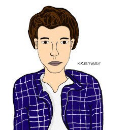 shawnmendes art drawing
