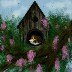 wdpbirdhouse nature bird spring tree