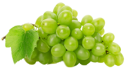 freesticker photo bygoogle sticker grapes